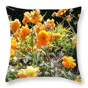 Yellow Flowers In May Throw Pillow