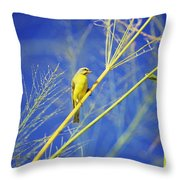 Yellow Fronted Canary Throw Pillow