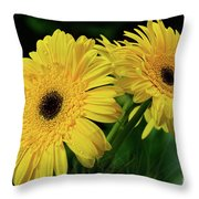 Yellow Gerbera Daisies By Kaye Menner Throw Pillow