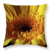 Yellow Gerbera Macro Throw Pillow