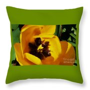 Yellow Glory From A Tulip Throw Pillow