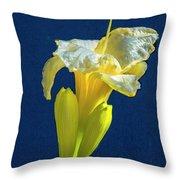 Yellow Glue Blue #f9 Throw Pillow
