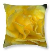Yellow Golden Single Flower Throw Pillow