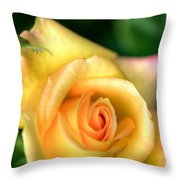 Yellow Golden Single Rose Throw Pillow