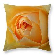 Yellow Graham Thomas Rose Throw Pillow by Jocelyn Friis