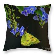 Yellow Grass Butterfly Throw Pillow