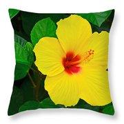 Yellow Hibiscus 3388 Throw Pillow