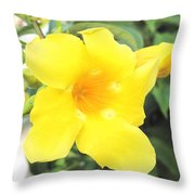 Yellow Hibiscus St Kitts Throw Pillow