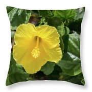 Yellow Hibiscus Throw Pillow