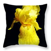 Yellow Iris After The Rain Throw Pillow