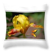 Yellow Iris And Butterfly Throw Pillow