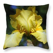 Yellow Iris Is For Passion Throw Pillow