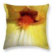 Yellow Iris Secret Throw Pillow