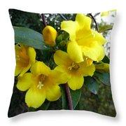 Yellow Jasmine Throw Pillow
