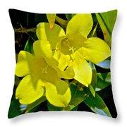 Yellow Jessamine At Pilgrim Place In Claremont-california Throw Pillow