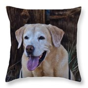 Yellow Lab At Bodie Throw Pillow
