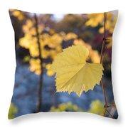 Yellow Leaf Newton Upper Falls Fall Foliage Throw Pillow