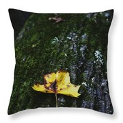 Yellow Leaf On Mossy Tree Throw Pillow