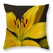 Yellow Lily 1 Throw Pillow