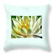 Yellow Lily Burst Throw Pillow