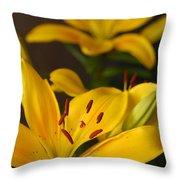 Yellow Lily Mirror Throw Pillow