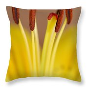 Yellow Lily Reach 1 Throw Pillow