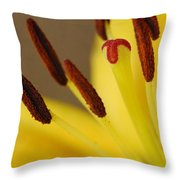 Yellow Lily Reach 2 Throw Pillow