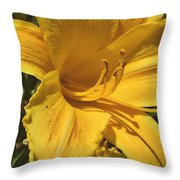 Yellow Lily Shines Brightly  Throw Pillow