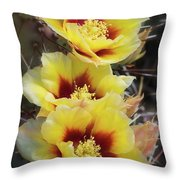 Yellow Long- Spined Prickly Pear Cactus  Throw Pillow