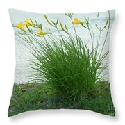 Yellow Love  Photography By Connie J Lee Throw Pillow