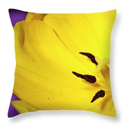 Yellow Magic Throw Pillow by Charles Dobbs