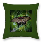 Yellow Mormon Throw Pillow