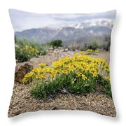 Yellow Mountain Blooms Throw Pillow by Margaret Pitcher