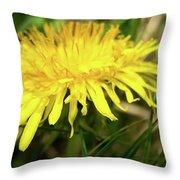 Yellow Mountain Flower's Petals Throw Pillow