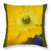 Yellow On Purple Throw Pillow