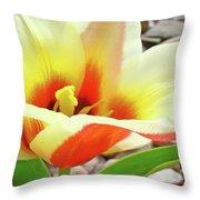 Yellow Orange Tulip Flower Art Print Baslee Troutman Throw Pillow