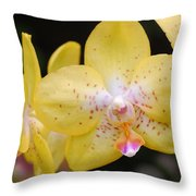 Yellow Orchid 2 Throw Pillow