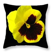 Yellow Pansy On Black Throw Pillow