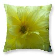 Yellow Petals Bathing In Sunlight Throw Pillow