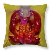 Yellow Phalaenopsis Centerpiece - Orchid And Raindrops 003 Throw Pillow