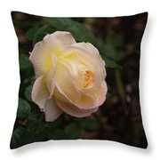 Yellow/pink Rose Throw Pillow