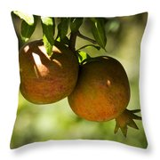 yellow Pomegranate Throw Pillow by Atul Daimari