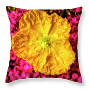 Yellow Poppy And Kalanchoe Flowers Throw Pillow
