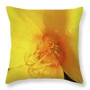 Yellow Poppy With Rain Throw Pillow