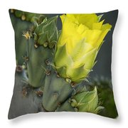 Yellow Prickly Pear Cactus Bloom Throw Pillow