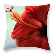 Yellow Red And Coral Hibiscus Profile Throw Pillow