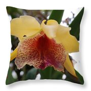 Yellow Red Orchid Throw Pillow