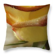 Yellow - Red Rose Throw Pillow