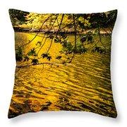 Yellow Reflection Throw Pillow