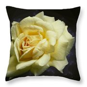 Yellow Rose 2 Throw Pillow